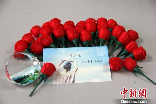 玫瑰花构成设计图片