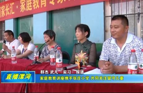 [视频]家庭教育讲座携手张庄小学 共同关注留守儿童