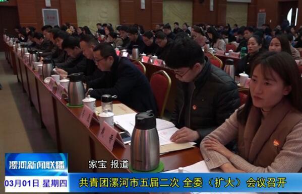 [视频]共青团漯河市五届二次全委(...