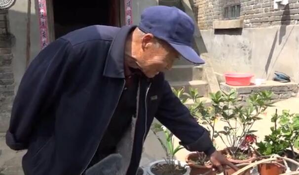 [视频]八旬老人闲不住 养花种草乐趣多