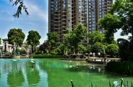 美好的风景让心情舒畅,一个幸福的家让生活舒心,漯河恒大项目承袭